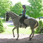 Why Use Dressage