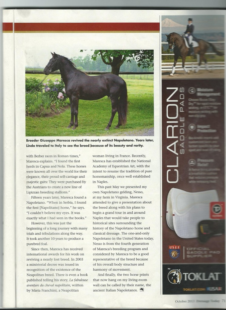 Napoletano article in Dressage today, page 2