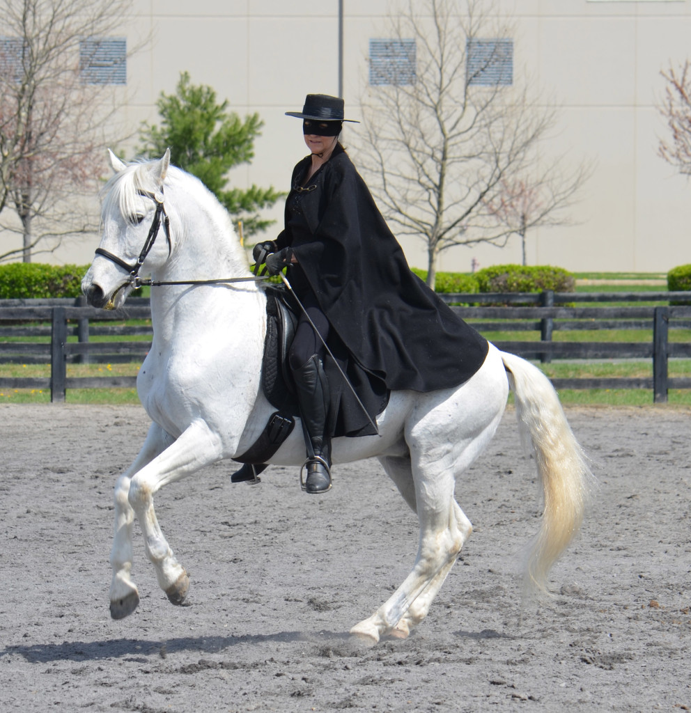 Granito performing canter pirouette during a Zorro exhibition